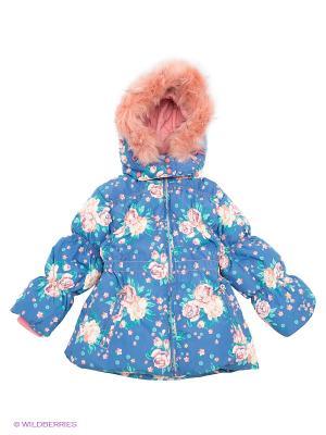Куртка Baby Club. Цвет: синий