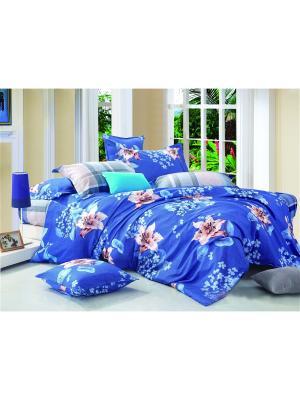 Постельное белье Lilya 1,5 сп. Amore Mio. Цвет: синий, коричневый