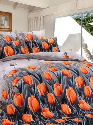 Комплект постельного белья, Аллегретто, Семейный KAZANOV.A.. Цвет: серый