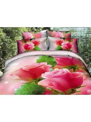 Постельное белье 2сп 70*70 Diva Afrodita. Цвет: розовый