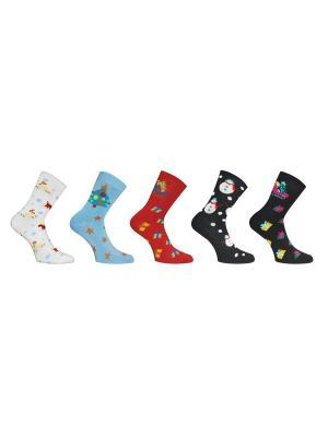 Носки 5 пар Master Socks. Цвет: белый, черный, голубой, красный
