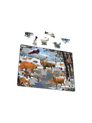 Пазл Животные северной Европы LARSEN AS. Цвет: белый, голубой, желтый, зеленый, оранжевый, синий