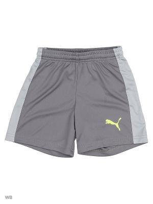 Шорты evoTRG Shorts Jr PUMA. Цвет: серый