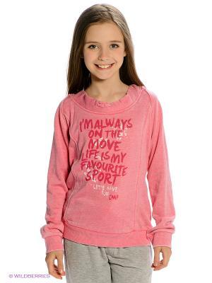 Свитшот CMP. Цвет: розовый