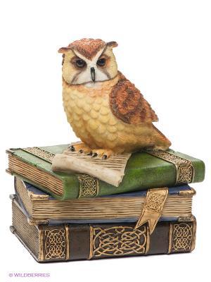 Шкатулка Сова на книгах Veronese. Цвет: темно-зеленый, светло-коричневый