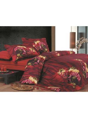 Комплект постельного белья 1.5 сп. Dream time. Цвет: бордовый