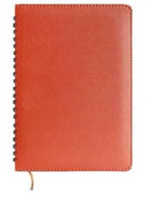 Ежедневник недатированный, кожзам, А5, оранжевый, Prima, 288л Maestro de Tiempo. Цвет: оранжевый