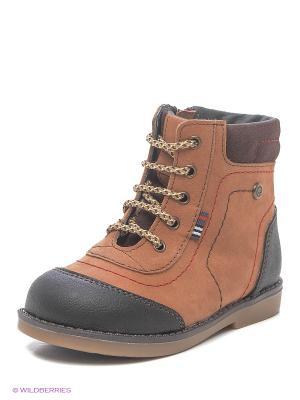 Ботинки ELEGAMI. Цвет: коричневый
