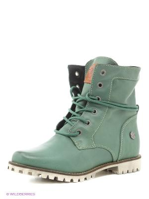 Ботинки El Tempo. Цвет: зеленый