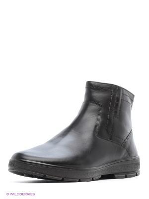 Ботинки Marko. Цвет: темно-коричневый