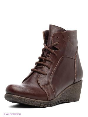 Ботинки Winzor. Цвет: коричневый