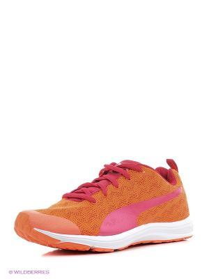 Кроссовки Evader XT v2 Wns Puma. Цвет: оранжевый