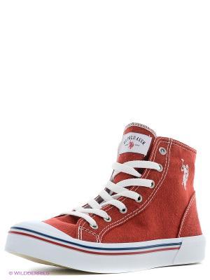 Кеды U.S. Polo Assn.. Цвет: красный