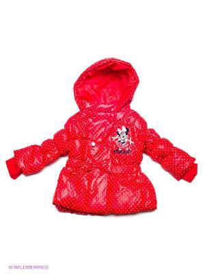 Куртка Sun City. Цвет: красный