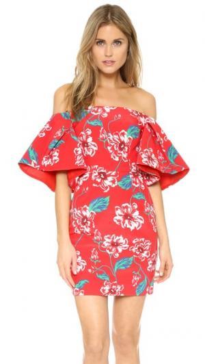 Платье с цветочным принтом и складками на рукавах Nicholas. Цвет: красный цветочный