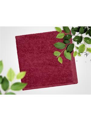 Набор из 4х махровых полотенец бордовый - 40*40, УзТ-НПБ-100-07 Aisha. Цвет: бордовый