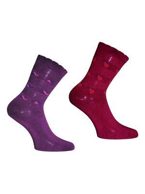 Носки 2 пары Master Socks. Цвет: бордовый, фиолетовый