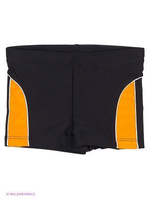 Шорты Sport Vision. Цвет: черный