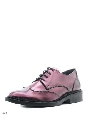 Ботинки NMNH. Цвет: фиолетовый