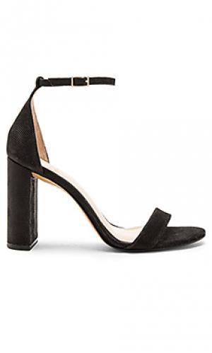 Обувь на каблуке mairana Vince Camuto. Цвет: черный