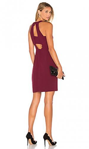 Платье холтер cecilia Greylin. Цвет: красное вино