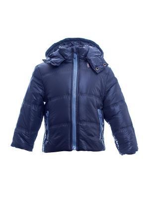 Куртка Bonito kids. Цвет: серый