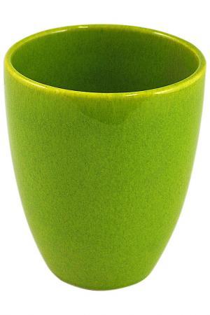 Кружка без ручки Киви Waechtersbacher. Цвет: зеленый