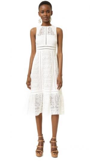 Кружевное платье Geo с открытой спиной Twelfth St. by Cynthia Vincent. Цвет: белый