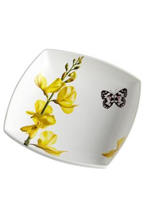 Тарелка суповая Ceramiche Viva. Цвет: мультицвет