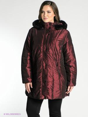 Куртка WEGA. Цвет: темно-бордовый