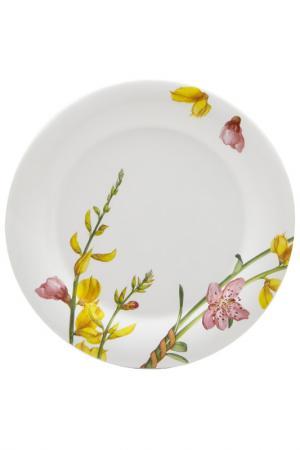 Тарелка десертная Фреско Ceramiche Viva. Цвет: мультиколор