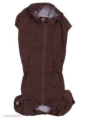 Дождевик холодный (Скай-терьер), мальчик ТУЗИК. Цвет: коричневый