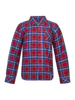 Рубашка FOX. Цвет: красный