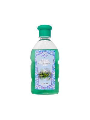 Шампунь для жирных и ослабленных волос, бутылка, 250 мл МИКРОЛИЗ. Цвет: зеленый