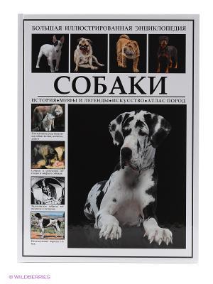 БИЭ. Собаки.История.Мифы и легенды.Искусство.Породы Издательство СЗКЭО. Цвет: белый