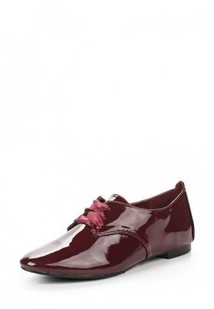 Ботинки Tom & Eva. Цвет: бордовый