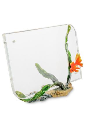 Фоторамка Золотая рыбка Win. Цвет: зеленый