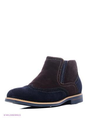 Ботинки Franco Bellucci. Цвет: коричневый, синий