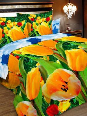 Комплект постельного белья, 2,0-сп, бязь, пододеяльник на молнии Letto. Цвет: зеленый, желтый