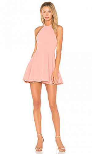 Мини платье leo NBD. Цвет: розовый