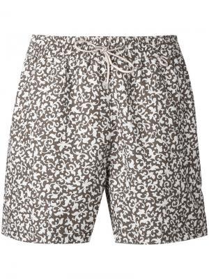 Пляжные шорты с принтом Loro Piana. Цвет: коричневый