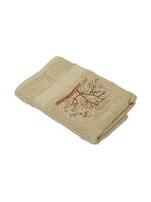 Комплект полотенец 2 предмета (40х70,50х90) Дерево La Pastel. Цвет: светло-коричневый