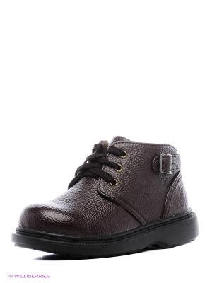 Ботинки Vitacci. Цвет: черный, коричневый