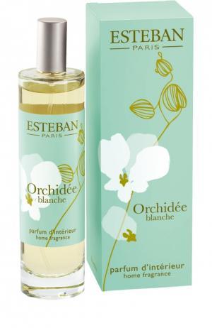 Интерьерные духи Белая орхидея Esteban. Цвет: бесцветный
