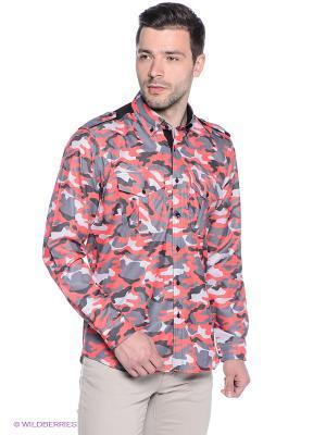 Рубашка Alex DANDY. Цвет: коралловый, серый