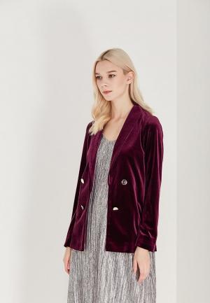 Пиджак Dorothy Perkins. Цвет: фиолетовый