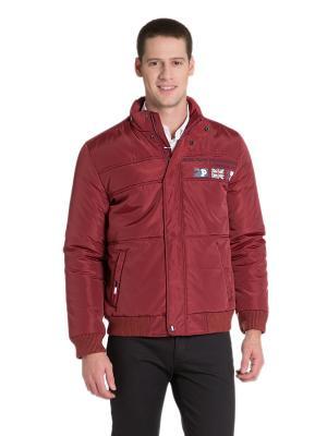 Куртка U.S. Polo Assn.. Цвет: красный