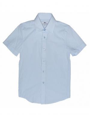 Рубашка BORELLI. Цвет: голубой