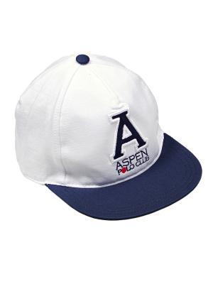 Бейсболка Aspen Polo Club. Цвет: белый