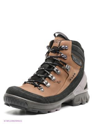 Ботинки ECCO 811543/58701